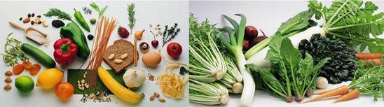 2017第六届中国国际养生食品博览会 政府重点支持项目